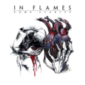 Download In Flames - Take This Life