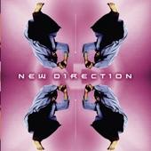 New Direction - New Direction (Album Version)