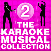 The Karaoke Musical Collection, Vol. 2