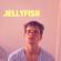 Jellyfish - Julian Smith