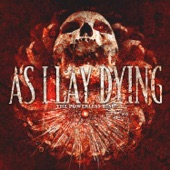 As I Lay Dying - Beyond Our Suffering