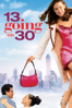 Gary Winick - 13 Going On 30  artwork