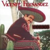 Vicente Fernández - Sonando En Garibaldi