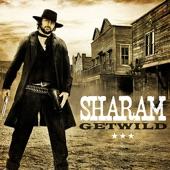 Sharam Feat. Kid Cudi - She Came Along