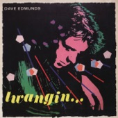 Dave Edmunds - You'll Never Get Me Up In One of Those