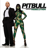 Pitbull Starring In: Rebelution