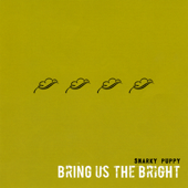 Bring Us The Bright-Snarky Puppy