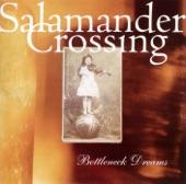 Salamander Crossing - Light In the Window