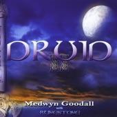 Medwyn Goodall - Where Pathways Meet
