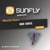 World Stars Karaoke - Bee Gees - Sunfly Karaoke