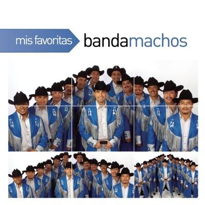 Mis Favoritas: Banda Machos - Banda Machos