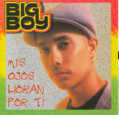 Mis Ojos Lloran Por Ti (feat. Angel Lopez) - Big Boy Cover Art
