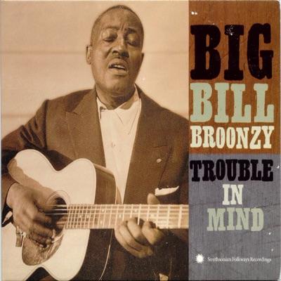 Trouble In Mind - Big Bill Broonzy