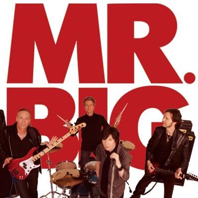 Next Time Around - Single - Mr. Big