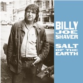 Billy Joe Shaver - Hill Country Love Song