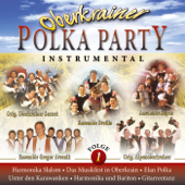 Oberkrainer Polka Party Instrumental, Folge 1-Various Artists
