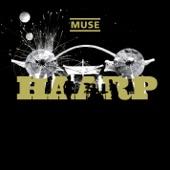 HAARP: Live from Wembley Stadium (Bonus Video Version)