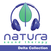 Relaxing and Inspiring Sound Therapy Delta 2