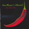Steve Wynn & The Miracle 3 - Tick ...Tick ... Tick artwork