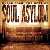 Soul Asylum - Cartoon