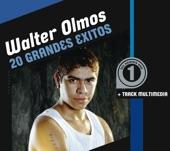 Walter Olmos: 20 Grandes Éxitos