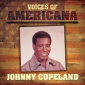 Johnny Copeland - Workin' Man's Blues