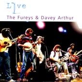 The Fureys & Davey Arthur - When You Were Sweet Sixteen
