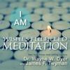 I Am Wishes Fulfilled Meditation - Dr. Wayne W. Dyer & James F. Twyman