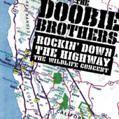 The Doobie Brothers - Another Park, Another Sunday (Live)