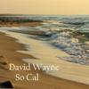 David Wayne - Hotel California artwork