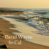 Hotel California  David Wayne - David Wayne