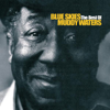 Muddy Waters - Blue Skies - The Best of Muddy Waters artwork