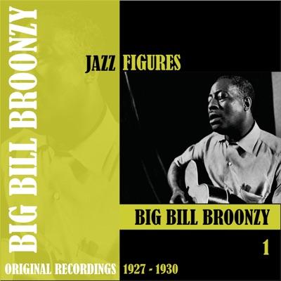 Jazz Figures: Big Bill Broonzy, Vol. 1 (1927-1930) - Big Bill Broonzy