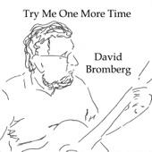 David Bromberg - Levee Camp Moan