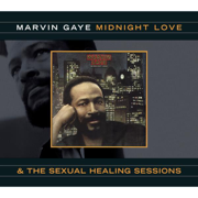Sexual Healing - Marvin Gaye - Marvin Gaye