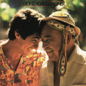 Gonzagão & Fagner