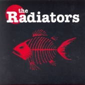 The Radiators - You Can't Keep No Secrets From The Holy Ghost