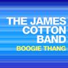 The James Cotton Band - Please Please (Live) artwork