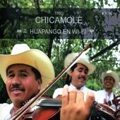 Trío Chicamole - Algo Extraño Pasa en Ti (El Aguanieve)