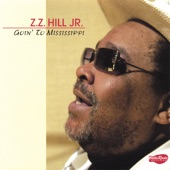 ZZ Hill Jr - Don't Let The Green Grass Fool You