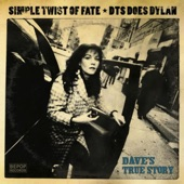 Dave's True Story - Simple Twist Of Fate