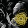 Grammy Nominated - KITARO