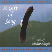 Brooke Medicine Eagle - Cedar Song