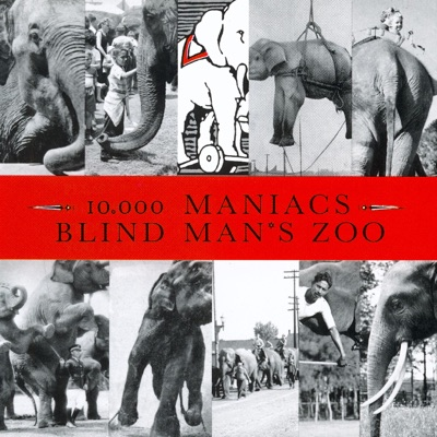 Blind Man's Zoo - 10000 Maniacs