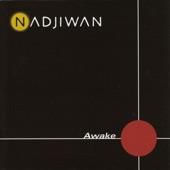Nadjiwan - The Gift