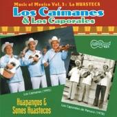 Los Caporales de Panuco - La Gata
