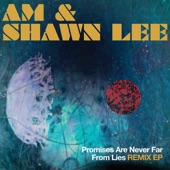 AM & Shawn Lee - Dark Into Light