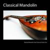 Classical Mandolin and Classical Guitar Duo - Classical Mandolin  artwork