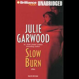 Slow Burn (Unabridged) audiobook