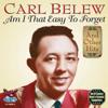 Carl Belew - Stop the World artwork
